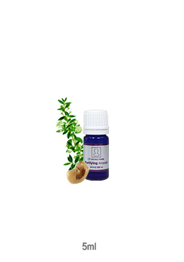 퓨리파잉앰플(Purifying ampoule) -5ml